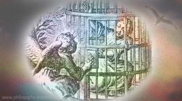 La fable de l'oiseau libre et de l'oiseau en cage