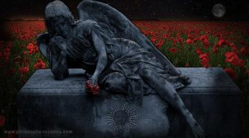 L'univers est sur son lit de mort